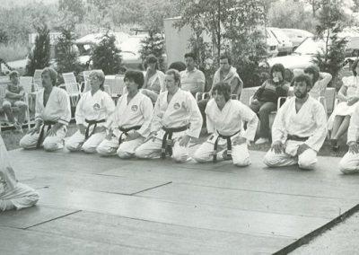 1985 - Demostage